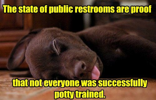 dogs public restroom potty trained caption