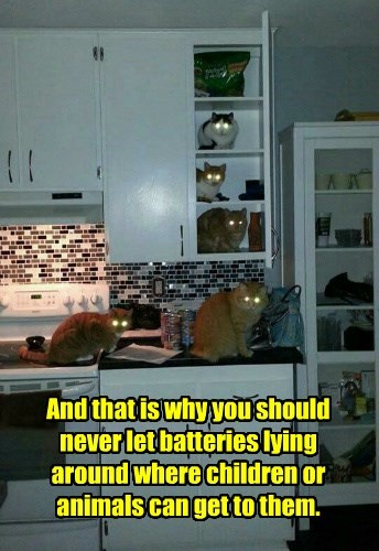 And that is why you should never let batteries lying around where children or animals can get to them.
