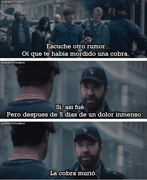 Chuck Norris la cobra