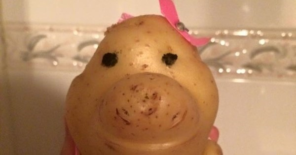 Cuteness of The Day: This Brazilian Teen is Best Friends With a Potato And The Internet Loves it