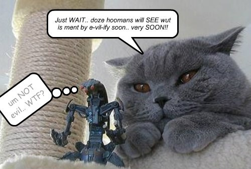 Just WAIT.. doze hoomans will SEE wut is ment by e-vil-ify soon.. very SOON!!