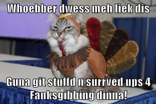 Whoebber dwess meh liek dis  Guna git stuffd n surrved ups 4 Fanksgibbing dinna!