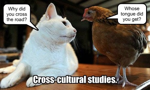 Cross-cultural studies.
