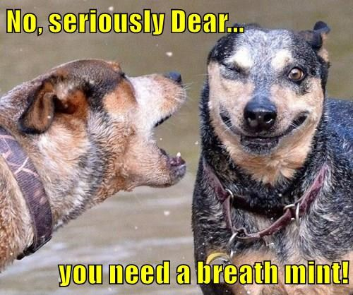 No, seriously Dear...  you need a breath mint!
