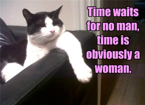 time caption Cats quote funny - 8585634560