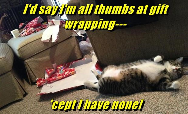 I'd say I'm all thumbs at gift wrapping---  'cept I have none!