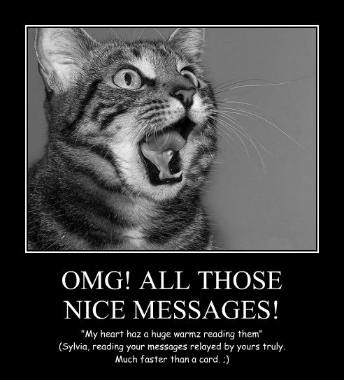 OMG! ALL THOSE NICE MESSAGES!