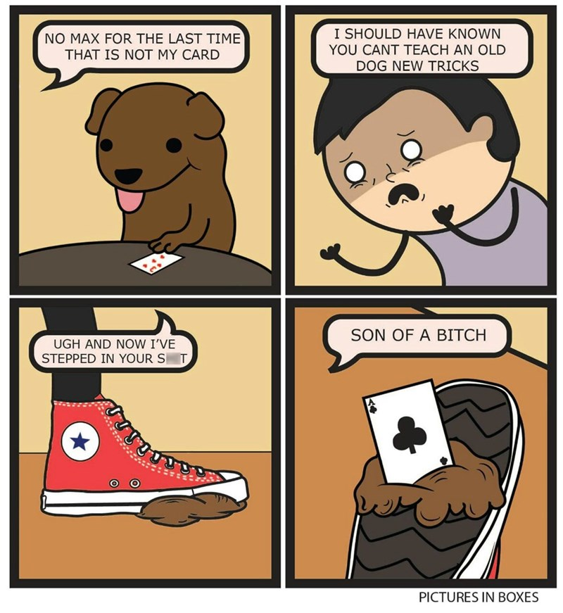 dogs magic web comics Maybe You Should Have Taught Your Dog to Believe in Himself Sooner
