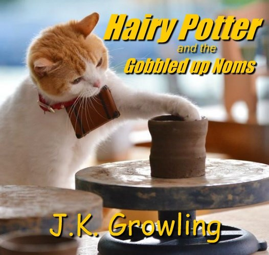 author Harry Potter caption Cats funny - 8586093056
