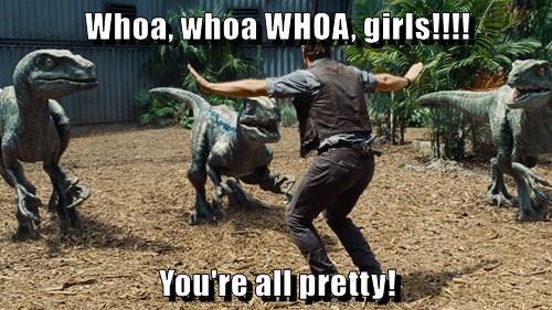 Whoa, whoa WHOA, girls!!!!  You're all pretty!