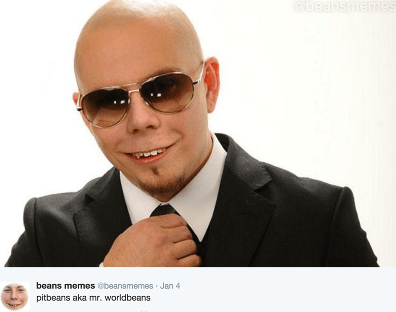 Beans Memes photoshop with Pitbull