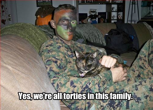 Yes, we're all torties in this family.