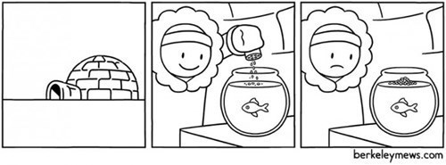 igloo,winter,fish,web comics