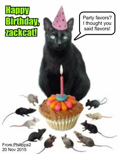 Happy Birthday, zackcat!