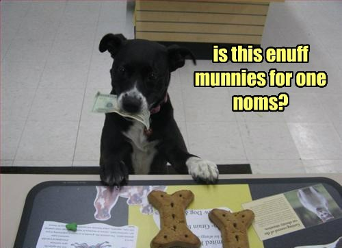 dogs,noms,caption,money,enough