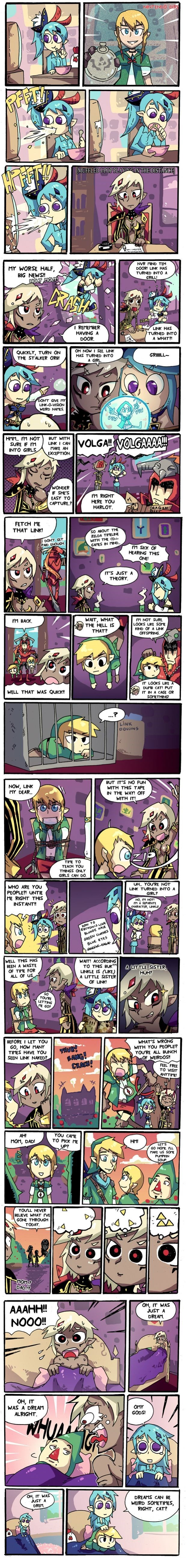 Fan Art,linkle,hyrule warriors,web comics