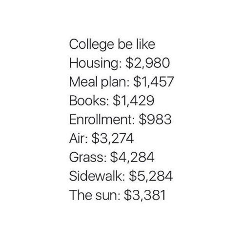 funny memes college cost air grass sidewalk the sun