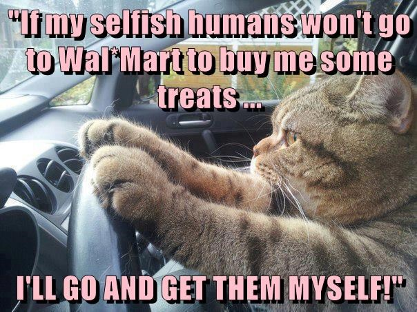 """""""If my selfish humans won't go to Wal*Mart to buy me some treats ...  I'LL GO AND GET THEM MYSELF!"""""""