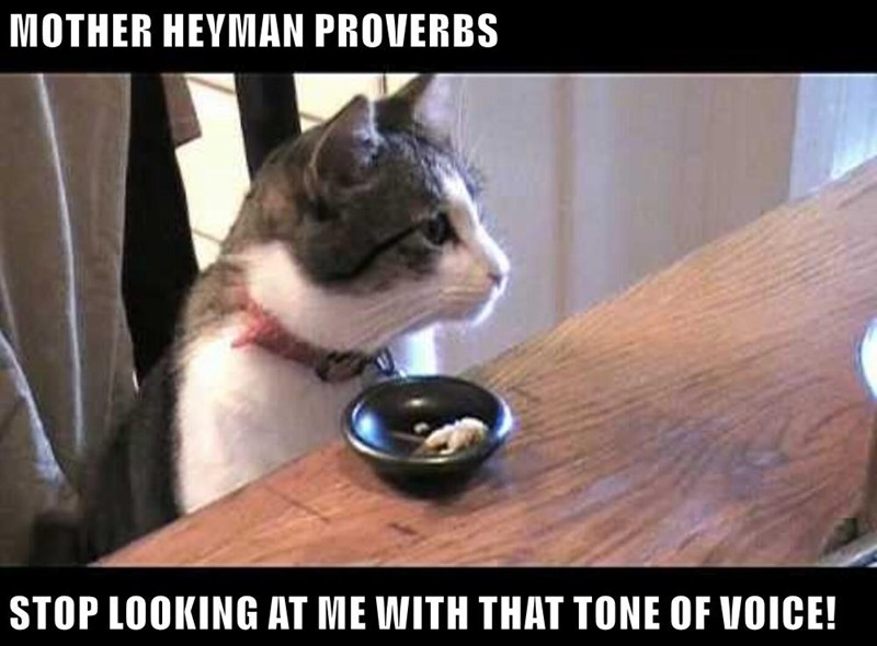 MOTHER HEYMAN PROVERBS  STOP LOOKING AT ME WITH THAT TONE OF VOICE!