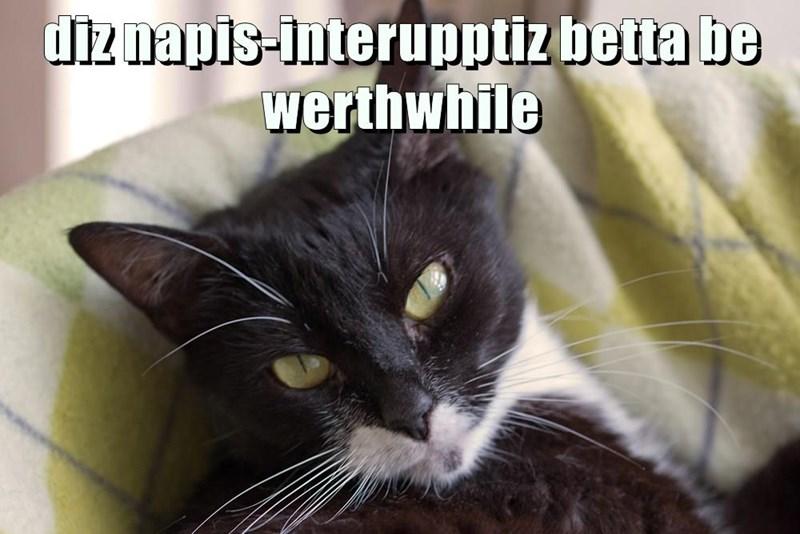 diz napis-interupptiz betta be werthwhile