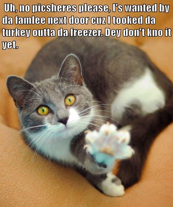 Uh, no picsheres please, I's wanted by da famlee next door cuz I tooked da turkey outta da freezer. Dey don't kno it yet.