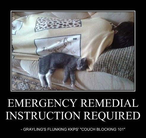 EMERGENCY REMEDIAL INSTRUCTION REQUIRED