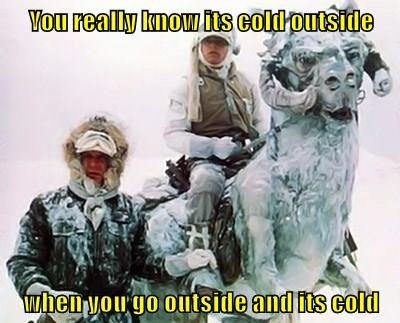 You really know its cold outside  when you go outside and its cold