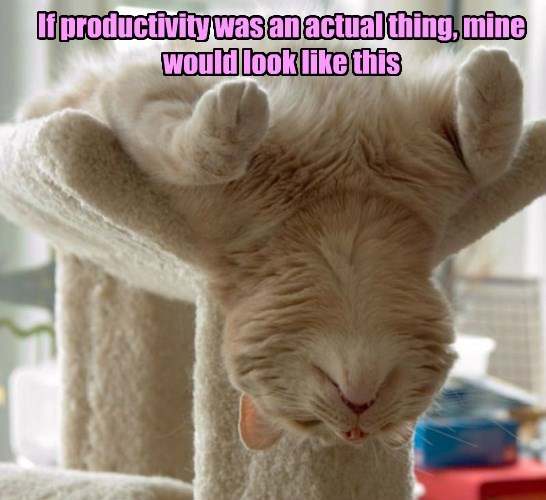 If productivity was an actual thing, mine would look like this