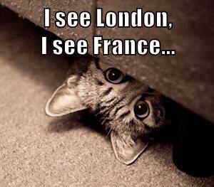 I see London,                                 I see France...