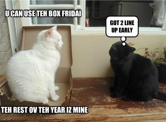 Black Friday Box Sale