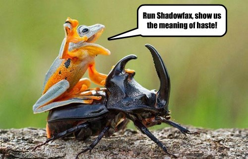 Lord of the Rings beetle frog - 8588322816
