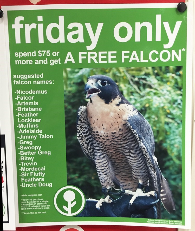 advertisement black friday falcon - 8588346880