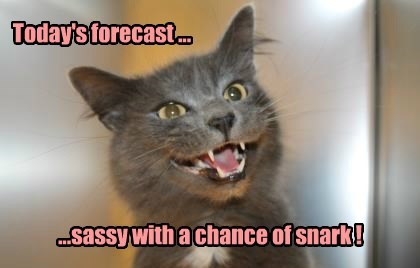 Today's forecast ...