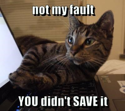 not my fault   YOU didn't SAVE it