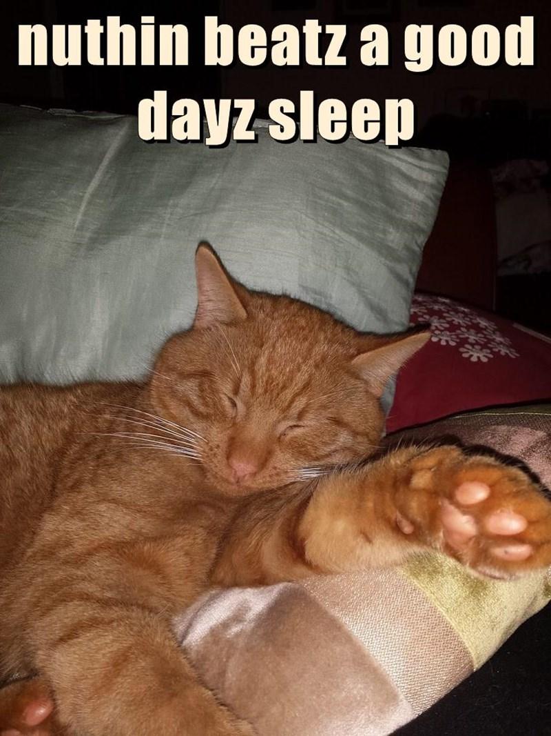 nuthin beatz a good dayz sleep