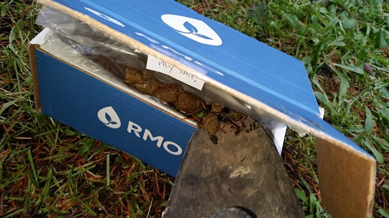 victim of package theft leaves poop for thieves