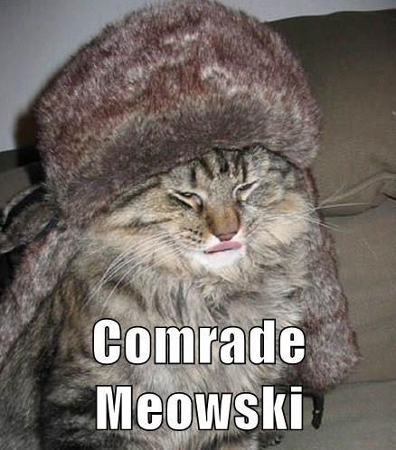 Comrade Meowski