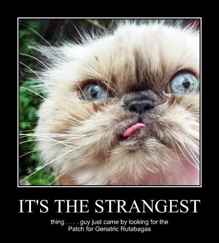 IT'S THE STRANGEST