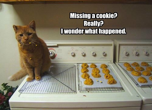 Missing a cookie? Really? I wonder what happened.