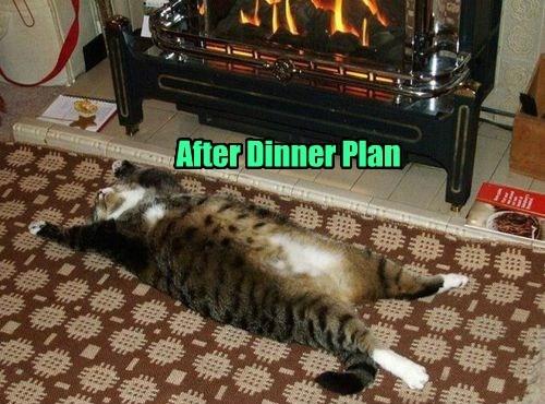 After Dinner Plan