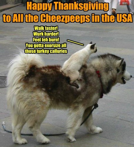 Happy Thanksgiving  to All the Cheezpeeps in the USA