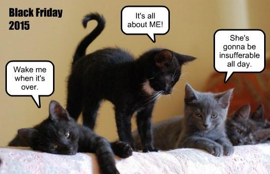 Black Friday hubris.
