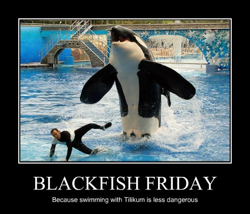 BLACKFISH FRIDAY