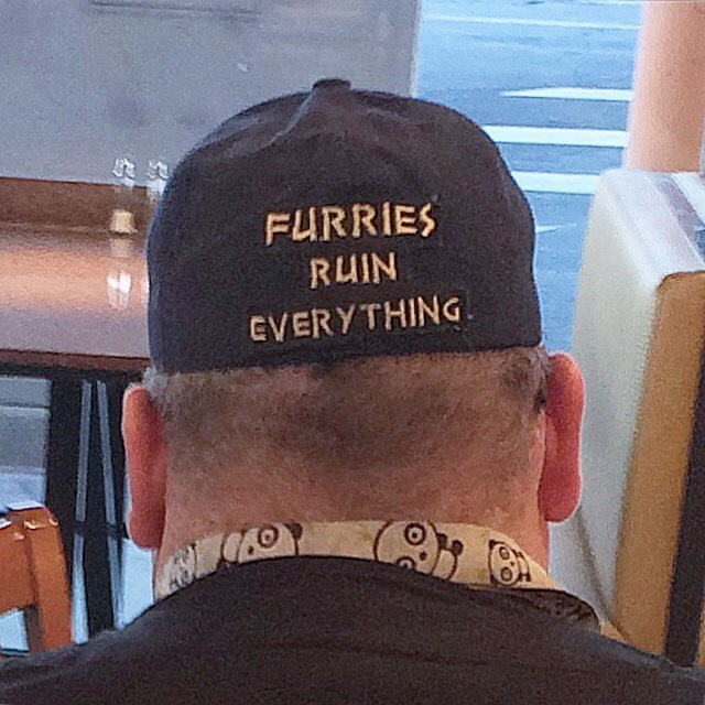 furries ruin everything