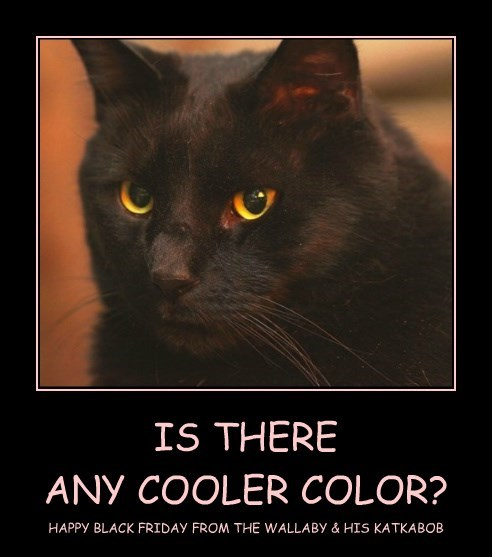 IS THERE  ANY COOLER COLOR?