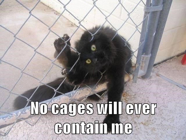 No cages will ever contain me