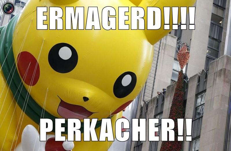 ERMAGERD!!!!  PERKACHER!!