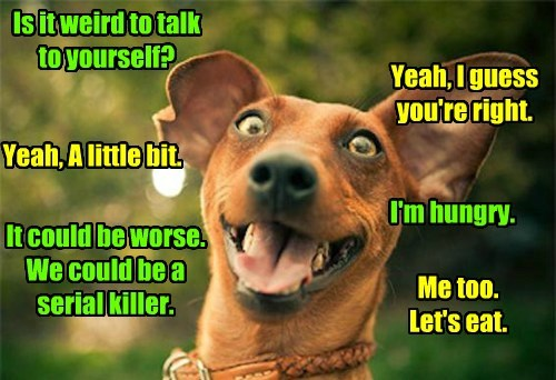 dogs talking caption funny - 8589690880
