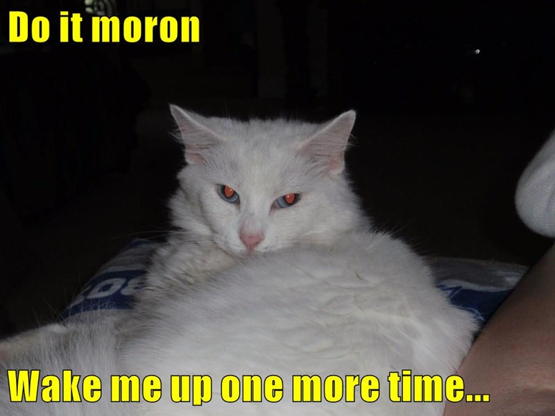 Do it moron  Wake me up one more time...