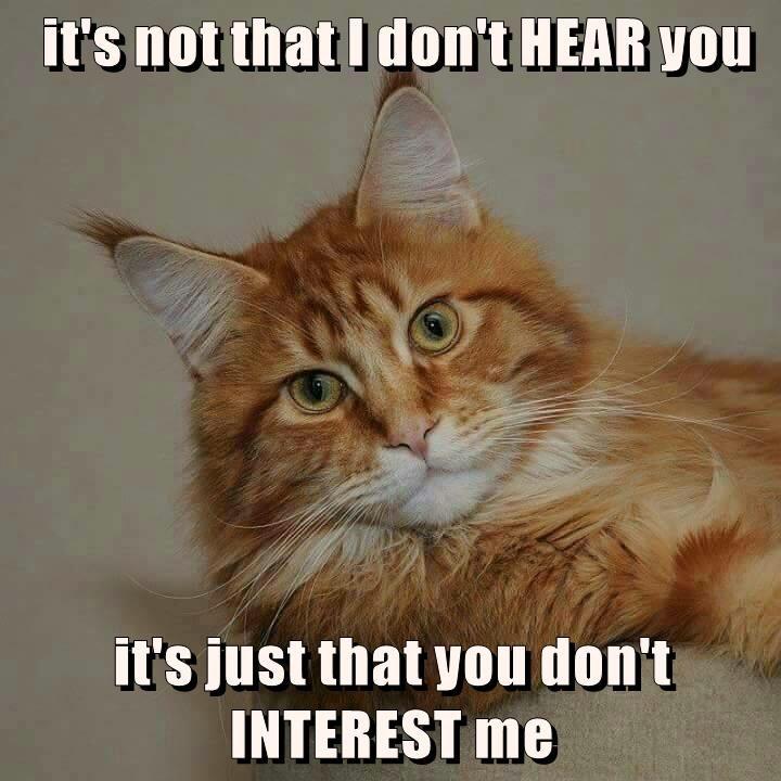 it's not that I don't HEAR you  it's just that you don't INTEREST me